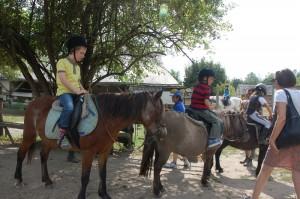 Logis Du Pressoir Pony Trekking